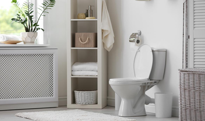 Tipps zur Sanitärreinigung